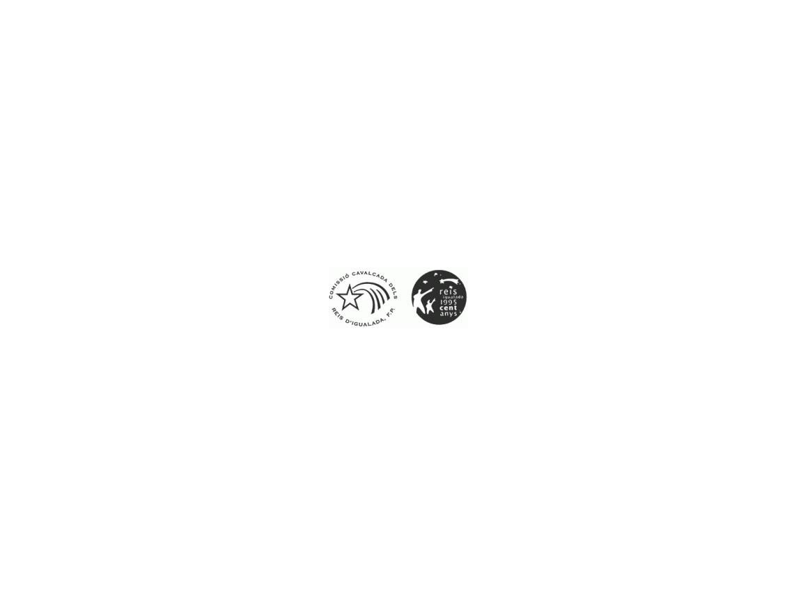 Logo Reis Igualada Grup Carles Enginyeria
