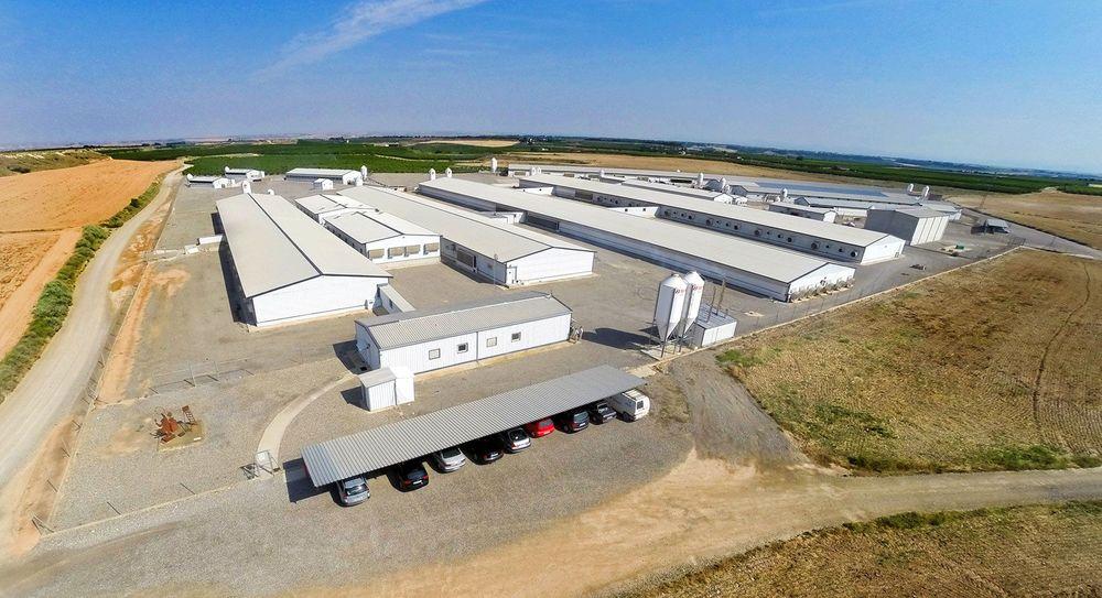 Fabrica Pienso Cincaporc Fraga Proyecto Grup Carles Enginyeria Sostenibilitat